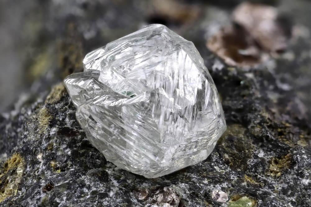 krvavi dijamanti maestro jewelers 2